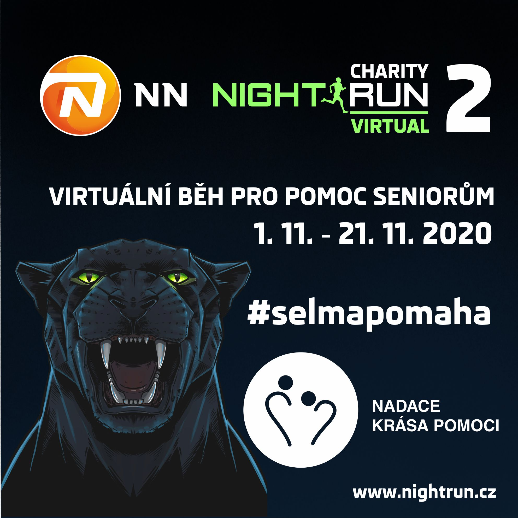 CHARITY NN NIGHT RUN 2